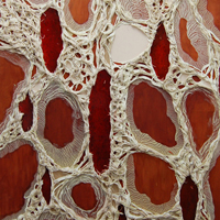Cells and Sinew, 2013, Encaustic, Ultralight, urethane, dispersions and thread on panel, 66 x 60 inches